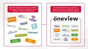 OneView Explained
