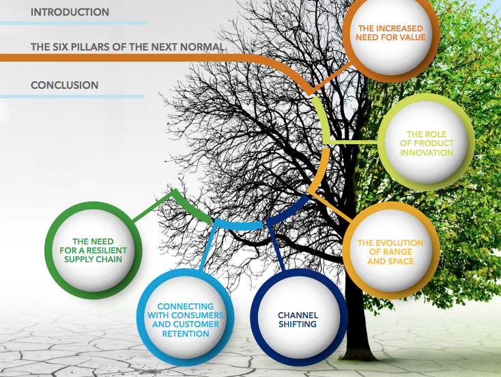 six pillars of the next normal